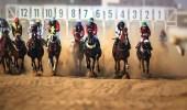 نادي الفروسية يقيم حفل سباقه الـ22 على كأسي أمانة الرياض والاستخبارات العامة