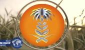 المؤسسة العامة للحبوب تنهي ترسية الدفعة الرابعة من القمح المستورد لهذا العام