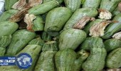 مصادرة محاصيل زراعية مجهولة المصدر في أسواق السيح