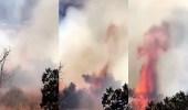 بالفيديو| الدفاع المدني يباشر حريقًا ألتهم أشجار جبل حضوة في بللسمر