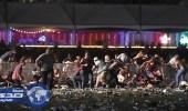 """حادث """" لاس فيجاس """" يرفع أسهم شركات صناعة البنادق والأسلحة الشخصية"""