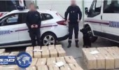 الجمارك الفرنسية تضبط شحنة مخدرات بـ17 مليون يورو