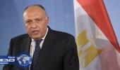 شكري: هناك تراجع في الدعم القطري للتنظيمات الإرهابية