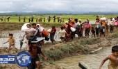 المنظمة الدولية للهجرة: ألفي لاجئ من الروهينجا يصلون يوميًا إلى بنغلاديش