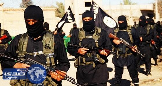 وزير الدفاع الروسي : تم القضاء على المسلحين وعادت الحياة في سوريا