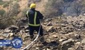 بالصور.. مدني الطائف يسيطر علي حريق استمر 5 ساعات في أشجار جبال قريع