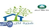 أمانة الرياض تطلق برنامجا لتشجير أرصفة المنازل ومواقف المنشآت التجارية
