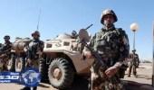 الجيش الجزائري يدمر قنابل ويوقف مهربين