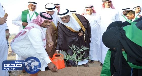 بالصور.. وزارة البيئة والمياه والزراعة تنظم حملة للتشجير