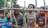 """"""" التعاون الإسلامي """" تطالب المجتمع الدولي بمقاطعة حكومة ميانمار"""