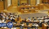 عضو شورى يطالب بترحيل العمالة في القطاعات التي تم توطينها