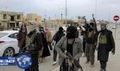 داعش يسعى لتعزيز وجوده في غرب إفريقيا