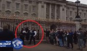 بالفيديو.. اعتقال امرأة لمحاولتها تسلق بوابات قصر بكنغهام الملكي ببريطانيا
