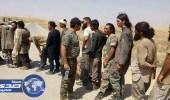 المئات من داعش يسلمون أنفسهم للبشمركة في كركوك العراقية
