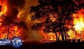 السلطات الإسبانية: حرائق الغابات اندلعت بفعل فاعل