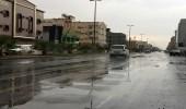 هطول أمطار متوسطة على تبوك