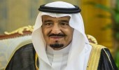 برعاية خادم الحرمين .. انطلاق بطولة مركز الملك عبدالعزيز الثالثة لجمال الخيل غداً