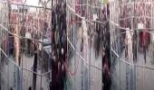 بالفيديو.. نمر يهاجم أطفال داخل سيرك
