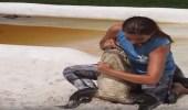 بالفيديو.. فتاة تصارع تماسيح بطريقة شرسة