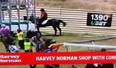 بالفيديو.. فارس يعتدي على حصانه بوحشية