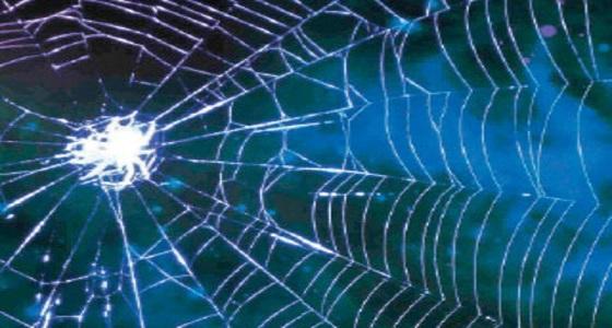 خيوط العنكبوت تستخدم في تنظيف ميكروفونات الجوال