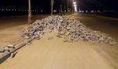 بالفيديو.. ملابسات جديدة حول إزالة أحد الأرصفة بطريق الملك عبدالعزيز