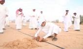 """بالصور.. طلاب كليات عُنيزة يشاركون في حملة """" استزراع الغضا """""""