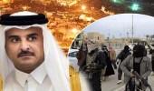 """بدء العد التنازلي للإطاحة بـ """" تميم """" .. المعارضة القطرية تستعد.. و """" آل دهنيم """" : ننتظر أوامر عبدالله بن علي"""