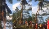 بالفيديو.. عودة فلبيني للأرض بعد العيش فوق نخلة 3 أعوام