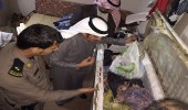 بالصور.. أمن الطرق وبلدية أم خنصر يضبطان مستودع لتخزين المواد الغذائية