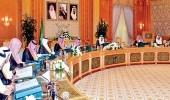 أمين لجنة المساهمات: قرار مجلس الوزراء يدعمنا لحفظ حقوق المساهمين