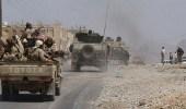 الجيش اليمني يسيطر على جبل الشعيبي في لحج