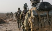 عودة 44 عنصر من التحالف الدولي من سوريا إلى بلادهم