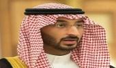 """من بينهم """" رنية """" .. نائب أمير مكة في جولة تفقدية لـ 3 محافظات"""