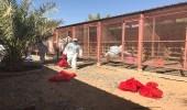 """بالصور.. """" البيئة """" : 4 إصابات جديدة لإنفلونزا الطيور في الرياض"""