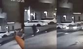 بالفيديو.. رصد شخص يلقي القمامة في الشارع