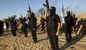 باحث إسلامي يكشف الأسباب الحقيقة وراء انتشار الإرهاب بسيناء