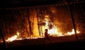 احتواء أكثر من 90 بالمائة من أكبر حريق غابات تشهده كاليفورنيا
