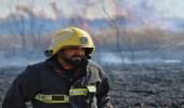 بالصور.. مدني حائل يخمد حريق بحشائش في وادي الأديرع