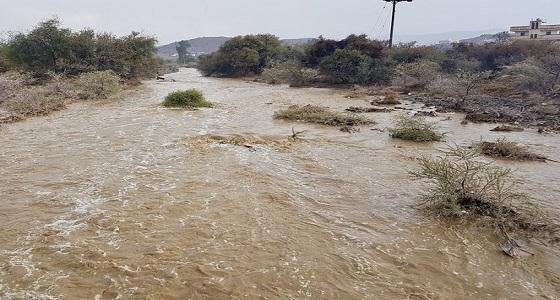 صور.. هطول أمطار غزيرة على البشائر في عسير