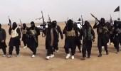 """"""" اعتدال """" يكشف وسائل """" داعش """" لإعادة إحياء نفسه"""