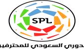 في ختام الجولة 14 .. ترتيب الفرق في دوري المحترفين