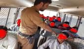 شرطة الجوف تنفذ حملة لضبط المخالفين لنظامي العمل والإقامة