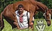 فيديو صادم لرجل يحمل حصانا على ظهره