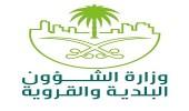 الشؤون البلدية تسمح بتركيب أجهزة الاستقبال والترددات اللاسلكية