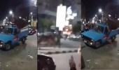 """بالفيديو.. هروب """" عجل """" من صندوق شاحنة صغيرة"""
