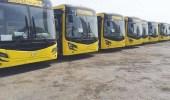 6 جهات حكومية ترصد اشتراطات السلامة في حافلات نقل الطالبات والمعلمات