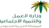 4 محاور تقدمها وزارة العمل لتوظيف المواطنين