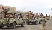 """الجيش اليمني يحرر جبل """" مركوزة """" بالبيضاء"""