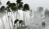 عاصفة شديدة تجتاح نيوزيلندا تؤدي لانقطاع الكهرباء عن آلاف المنازل